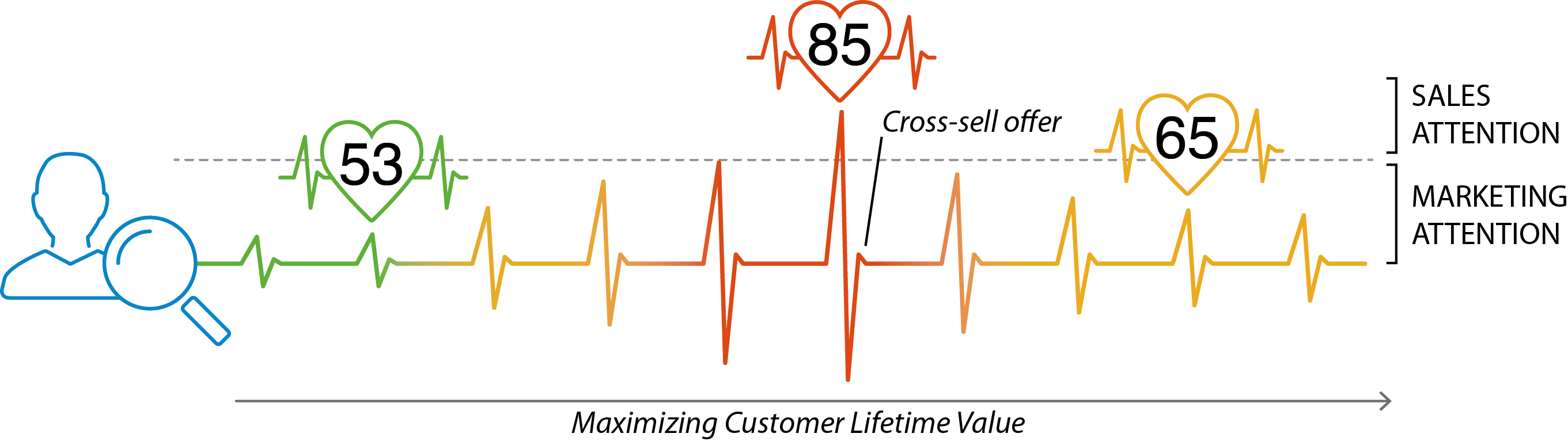 Visualization of Customer Lifetime Value as a pulse rate