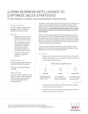 Using Business Intelligence to Optimize Sales Strategies
